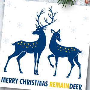 Pack of 6 Remaindeer Christmas Cards