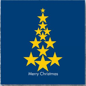Pack of 10 assorted Pro EU Christmas Cards